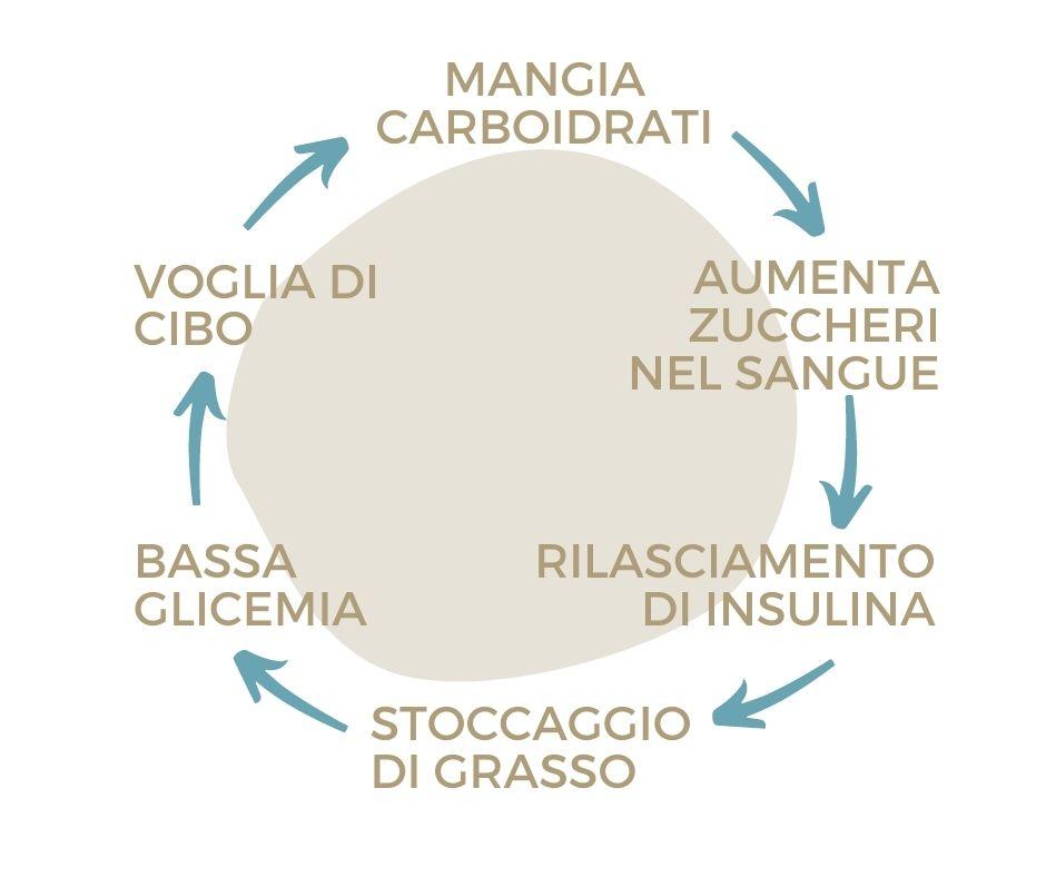 Ciclo Carboidrati Diagrama